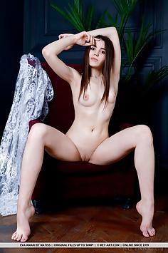 Charming Eva Amari in Dress - Met Art Nude Gallery